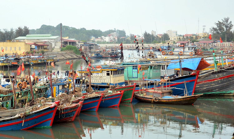 Nhờ nguồn vay từ Ngân hàng chính sách xã hội, nhiều hộ ngư dân ở Đồ Sơn có thêm tiền sửa sang tàu thuyền, mua sắm ngư lưới cụ ra khơi bám biển